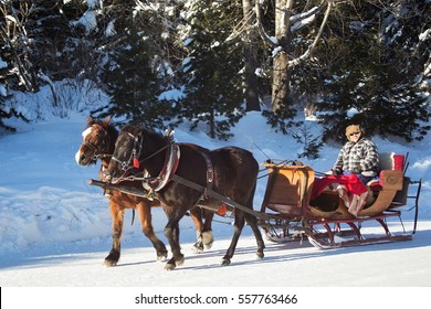 SLOVAKIA, STRBSKE PLESO - JANUARY 05, 2015: Horse sleigh carriage in Strbske Pleso. The village is a favorite ski, tourist, and health resort in the slovakian part of High Tatras mountains.