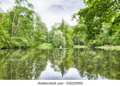 Slovakia Willow lake with water and green colors