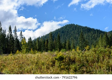 slovakian carpathian mountains in autumn with green forests. nice day for hiking