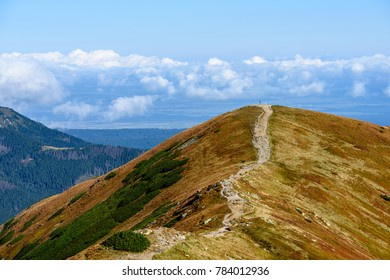 slovakian carpathian mountains in autumn. nice day. hiking trails going up