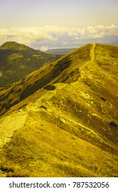 slovakian carpathian mountains in autumn. nice day. hiking trails going up - vintage film look