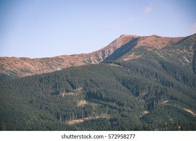slovakian carpathian mountains in autumn. sunny day for hiking - vintage look