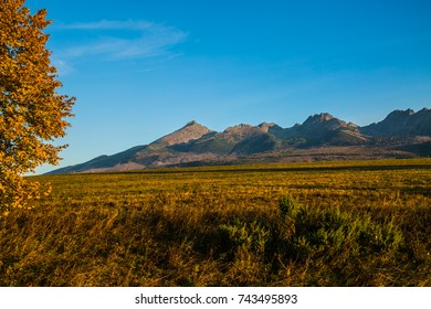 Slovakian nature autumn landscape with colorful forest