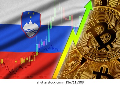 Slovenia flag and cryptocurrency growing trend with many golden bitcoins
