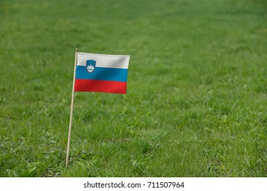 Slovenia flag, Slovenian flag on a green grass lawn field background. National flag of Slovenia waving outdoor