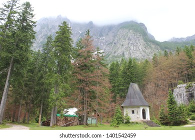 Slovenian mountains with forest scenerio - Shutterstock ID 1401542459