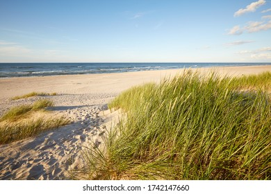 Slovinski national park, Leba sand dune on the Baltic coast