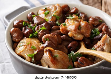 Slow cooked chicken with broad beans close up in a bowl on the table. horizontal