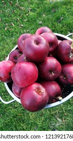 To slow down. To eat apples in order to help in the matter of aging. Choose a dark red (or pink) apples because it is the type that has the highest anti-oxidant. And high in vitamin C .