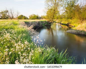 Slow flowing river through a meadow in spring sunset scenery