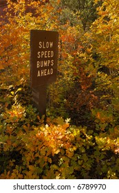 Slow speed bumps ahead sign with fall colors