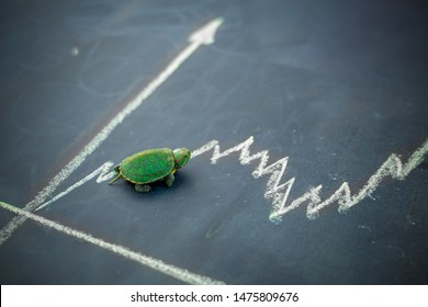 Slow but stable investment or low fluctuate stock market concept, miniature figure turtle or tortoise walking on chalkboard with drawing price line graph of stock market value.
