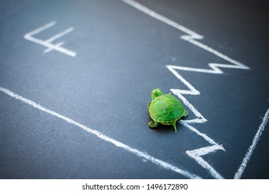 Slow but stable investment or low fluctuate stock market concept, miniature figure turtle walking on chalkboard with drawing price line graph of stock market value. Swiss franc exchange rate