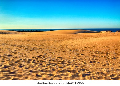 Slowinski National Park is situated on the Baltic Sea coast, near Leba, Poland. Desert landscape with the largest moving sand dunes in Europe. Hot summer day with clear sky, in the middle of summer.
