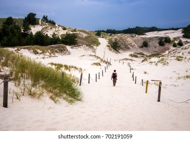 SLOWINSKI NATIONAL PARK,POLAND - August 29, 2017. Landscape of Slowinski National Park, consisting of moving dunes and old dried trees is considered to be one of the most beautiful sites in Poland.