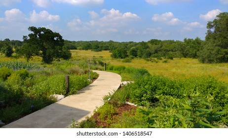 a slowly curving trail at a wildflower center park