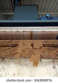 sludge excess tobetle press in activated sludge system