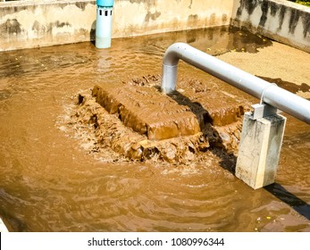 Sludge treatment in wastewater management system, flowing brown smelly liquid and drying in Sludge bed, made it for fertilization can use in agriculture field.