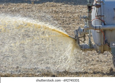 Slurry on farm in agriculture with tractor