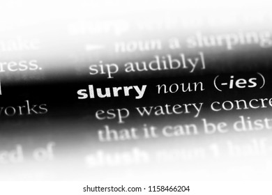slurry word in a dictionary. slurry concept.