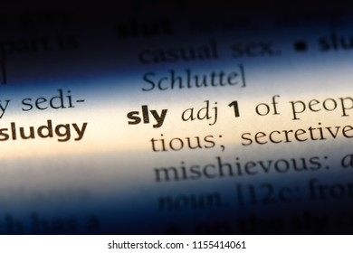 sly word in a dictionary. sly concept.