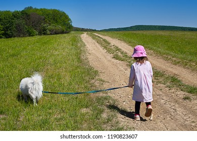 Small 3-year-old girl with dog on slip walkis trough the fields. Small girl with dog on string walks on footpath in country. Girl plays with dog in rustic environment. Child on rumble with dog.