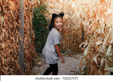 Small 8 year old girl, of Asian descent, wearing a cat ears headband, search for the way out in a corn maze.