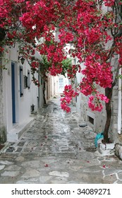 A small alley in a picturesque Greek island after rain