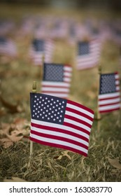 Small American flag on a lawn with more flags in the background.