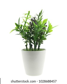 Small artificial tree in a pot isolated on white background.