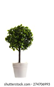 Small artificial tree in a pot isolated in white background. Concept image for interior design and decoration of home and office. Copy space available.
