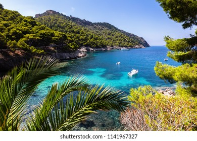 Small bay with green forest and azure water