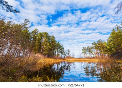 A small Bay of the Ob river. Berdsk, Novosibirsk oblast, Siberia, Russia