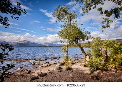 A small beach beside Loch Lomond from the West Highland Way, Stirlingshire, Scotland, UK.