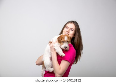 Small bearded jack russell terrier puppy with her owner.