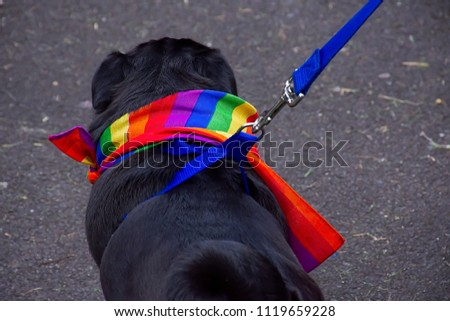 Small black gay