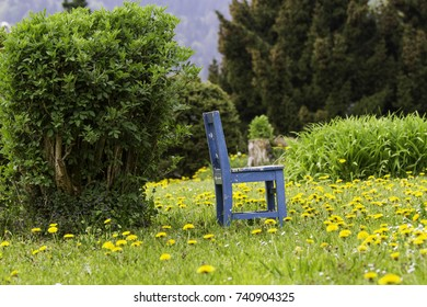Small blue wooden chair with bushes and lawn in a beautiful garden. Children's chair.