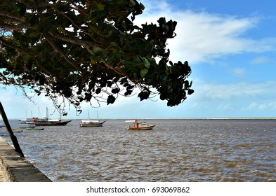 Small boats anchored in the sea protected by coral reefs in Porto Seguro, Bahia, Brazil. Almond on sidewalk by the sea.