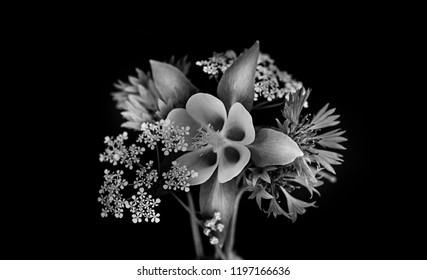 small bouquet of garden flowers, black background, black and white image. isolated.