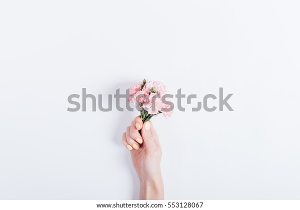 Small bouquet of pink carnations in a woman's hand with yellow nail polish on a white background, copy space