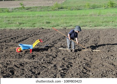 A small boy with a child's bright wheelbarrow helps parents on the field. Toddler farmer with tools farm field on farm