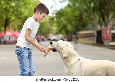 Small boy feeding ice-cream cute dog on street