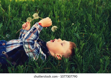 a small a boy lying down on the grass holds in the hands of flowers dandelion