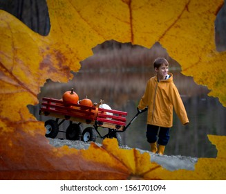Small boy pulling his wooden red wagon filled with pumpkins taken through a fall leaf.