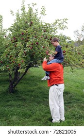 small boy showing his father the apple he picked