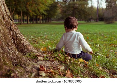 Small boy sitting on grass by back