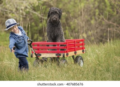small boy trying to pull his big red wooden wagon with his large poodle dog in it.