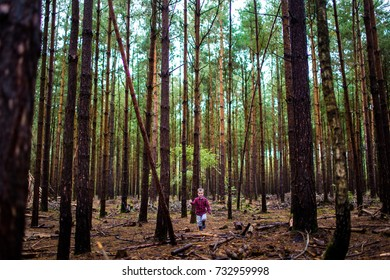 Small boy walking having an adventure outdoors in the woods forest