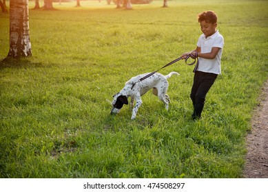 small boy walking with his dog friend at the park. evening sun.