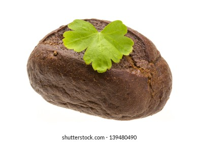 Small bread and parsley